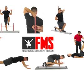 FMS Pic
